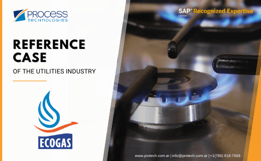 ECOGAS - Reference case
